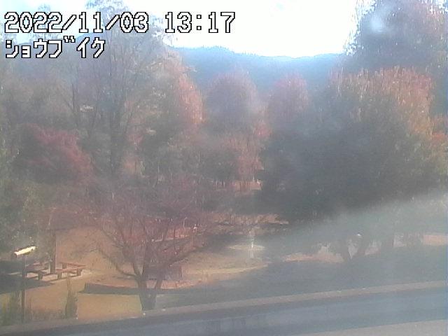 山口大学 吉田キャンパスライブカメラ